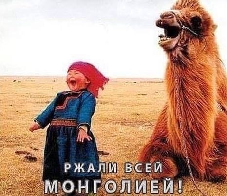 rusdozor.ru