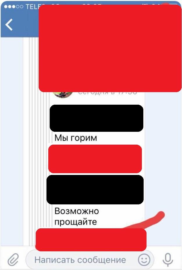 дети ф. киркорова фото