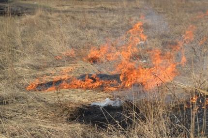 Больше 2-х гектаров сухой растительности горело вИркутской районе