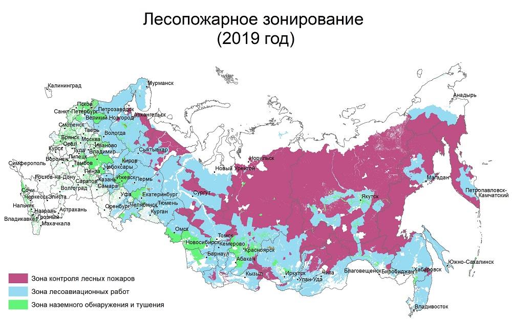 площадь занятая лесами в россии в км2